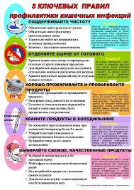 Кишечная инфекция виды причины симптомы лечение Профилактика кишечных инфекций