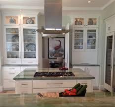 Kitchen Cabinet Display Kitchen Design Minimalist Aqua Kitchen Decor With Glass Door