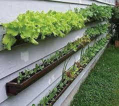 Garden U0026 Landscaping Cool Exterior Design With Container Container Garden Ideas Vegetables