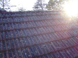 prior to roof cleaning
