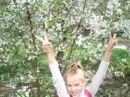 lybovw Блог бабушки Любы Весна в моем городе Весна в моем городе