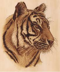 pyrography for beginners. free wood burning patterns for beginners - yahoo image search results pyrography