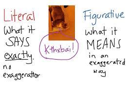 literal language english 10 literal vs figurative language writing