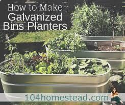using galvanized bins as planters