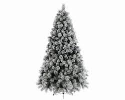 The Photo Says It All  Tong Garden Centre Bradford  TripAdvisorTong Garden Centre Christmas Trees