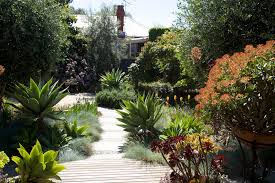 Small Picture BoldSimplicity Award winning eco friendly garden design in