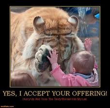 Memes Vault Funny Animal Memes for Pinterest Boards via Relatably.com
