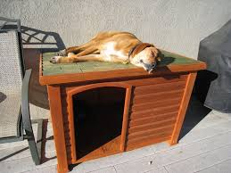 homemade dog kennels 2. House Plans Indoor Dog Under Deck Buildw To Diy Ideas For 2 Dogs Inside Medium Homemade Kennels