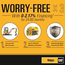 Worry Free X 3 | Riggs Cat