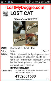 Pet Poster How To Make An Effective Missing Pet Poster With Pictures 18
