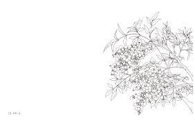 花のぬりえ帖 樹に咲く花