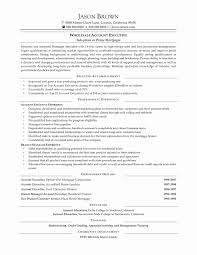 50 New Sample Resume Format For Accounts Executive Resume