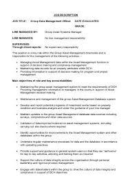 job description data manager