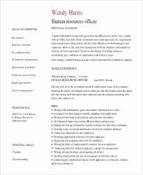 Free Work Experience No Experience Resume Summary Examples Professional Summary For