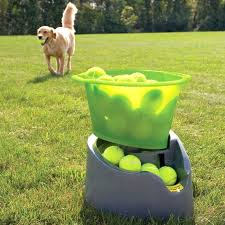 dog ball launcher indoor remote fetch automatic tennis for dogs