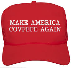 Image result for make america great idiot image