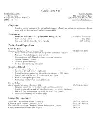 Example Of Objective In Resume Examples Of Career Objectives On
