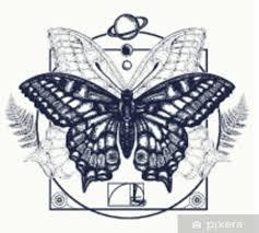 Fototapeta Vinylová Motýl Tetování Umění Symbol Magie Renesance Esoterický Cestování Duše Motýl V Mystickém Kruhu Designu Trička