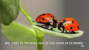 Déclarations Damour Et Phrases Romantiques Pour Lui Dire Je Taime