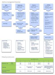 Asthma Management Flow Chart Asthma