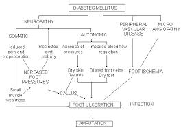 Diabetic Foot Exam Chart Diabetologia Croatica 27 3 1998