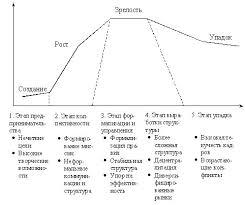 Теория организации Понятие и этапы жизненного цикла организации Жизненный цикл организации