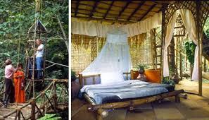 luxury tree house resort. 12 Exotic Treehouse Eco-Vacations Luxury Tree House Resort