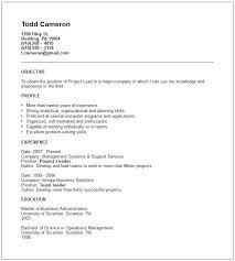 Short Resume Examples Beauteous Short Resume Template Stunning Short Resume Template Free Career