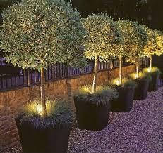 planter lighting. Planter Lighting Idea. Love! I