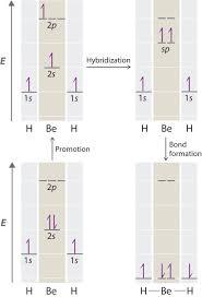 10 7 Valence Bond Theory Hybridization Of Atomic Orbitals