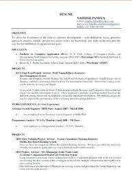 Sample Resume Google Docs