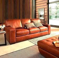 homemade couch cleaner homemade couch cleaner leather sofa leather couch conditioner homemade home improvement programme toilet