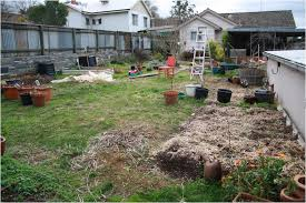 Small Picture Backyards Appealing Backyard Looking North 86 Edible Garden