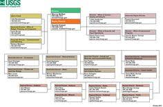 Usgs Org Chart A Director And A Deputy Director Oversee A