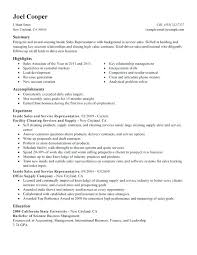 Examples Of A Sales Resume Resume Example Sales Resume Summary Custom Resume Summary Examples For Retail