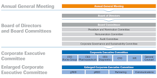 Corporate Governance Structure Chart Roche Our Governance