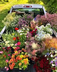 Garden State Floral Design How To Shop Garden State Flower Co Op