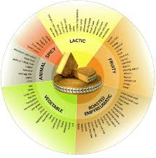 Cheese Flavor Chart Cheese Flavor Wheel In 2019 Comte Cheese Queso Cheese