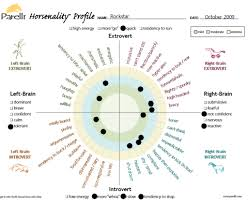 Individual Personality Or Horsenality