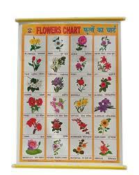 foam sheet flowers name teaching chart