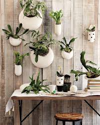 a growing trend ceramic wall planters