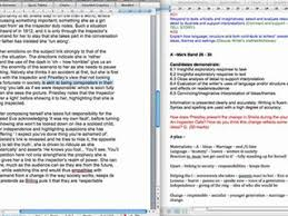 essay about profession doctor helpers
