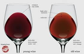 wine aging chart montemaggiore blog the wine lover s dilemma drink now or later
