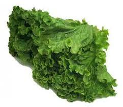 Vegetables Leaf Rome Fontanacountryinn Com