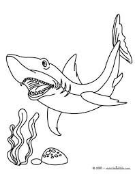 Small Picture Great white shark coloring pages Hellokidscom