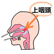 鼻 うがい 頻度