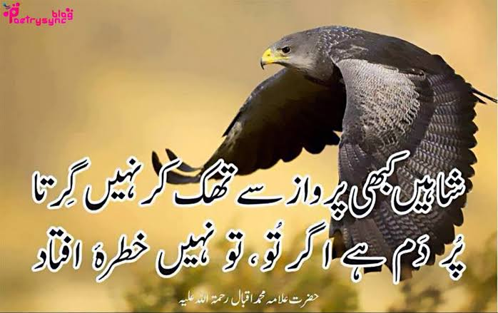 inspirational shayari on life in urdu