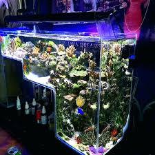 fish tank lighting ideas. Fish Aquarium Ideas For Home Best On Tank Aqua And Tanks Natural Designs . Lighting