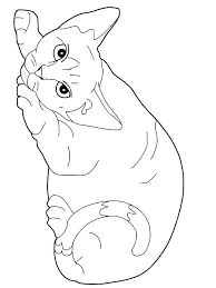 Cat Pictures To Color Coloring Cat Pictures Cat Coloring Page Cat