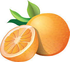 orange clipart png. orange image free download clipart png cliparting.com
